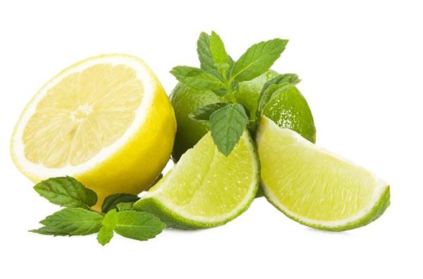 Lime lemon and fresh leaves of mint on white
