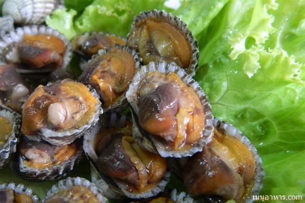 เคล็ดลับลวกหอยแครงอย่างไรให้แกะทานง่าย