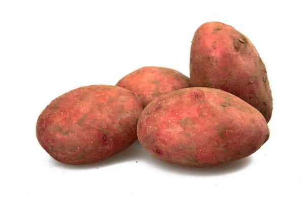 ประโยชน์มันเทศสีม่วง-ส้ม อุดมด้วยสารอาหารเพื่อสุขภาพ